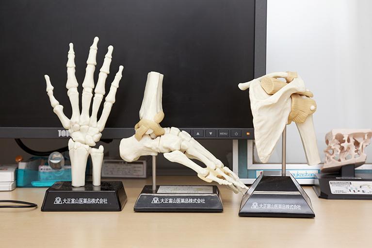 骨量が減少し、骨がもろく、骨折しやすくなる疾患
